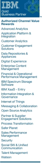 IBM Partner Channel Value