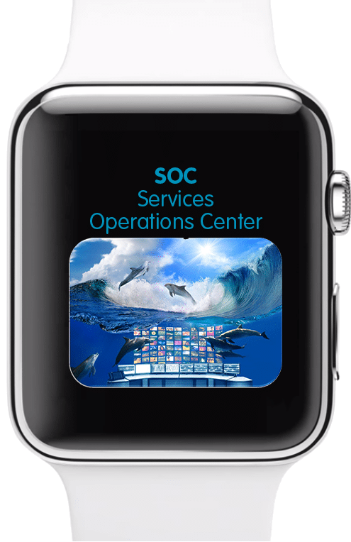 iWatch_SOC