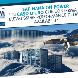 Hana on Power use case