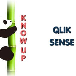 Corso Know UP Qlik Sense