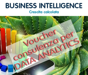 Voucher Digitali Data Analytics