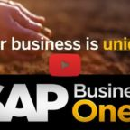 Un video su SAP Business One